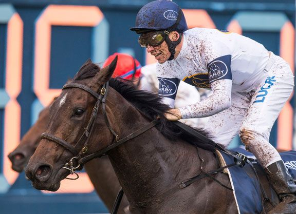 Jockey Craig Williams will ride G1 Golden Slipper winner She Will Reign (Aus) (Manhattan Rain {Aus}) in the G1 Schweppes S. (formerly the Moir S.) at Moonee Valley on Sept. 29, with regular rider Ben …