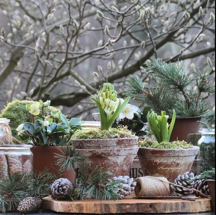 70 best Garten images on Pinterest Garden deco, Garden decorations