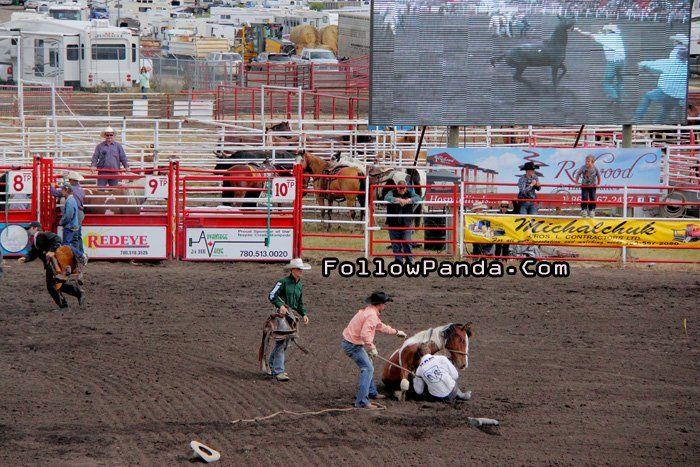 Wild Horse Saddle at Teepee Creek Stampede Rodeo Event - County of Grande Prairie, Alberta, Canada | FollowPanda.Com