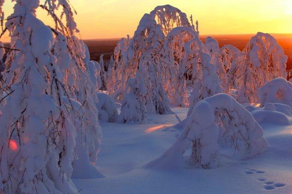 #Saukkovaara # Winter at its best!