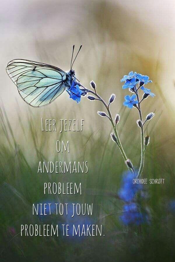 Leer jezelf om andermans probleem ...