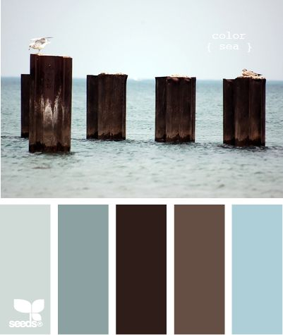 Ocean inspired colors for a living room, bedroom, or kitchen. The dark brown is the wood tones and the lighter brown is the carpet. I like the far right for the wall color and the two blues on the left for accents.