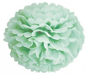 Pom Pom aus Papier 35 cm Mint Miss �toile