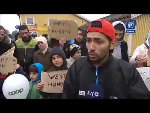 """Погледајте """"очајне"""" избеглице у Европи како се жале на спор интернет, да им не дају новац за цигарете... (видео)  Погледајте компилацију изјава разочараних и """"очајних"""" избеглица који су нашли уточиште у Европи. Неко би гледајући ове кадрове мислио да се ради"""
