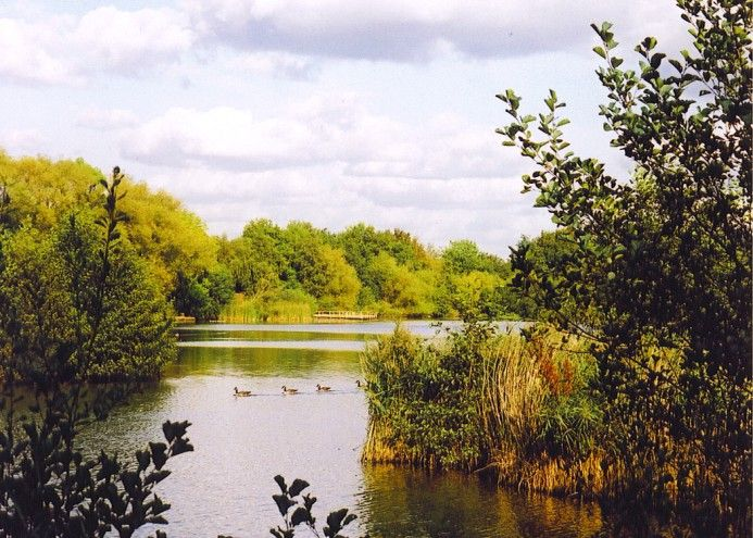 Fleet Pond - The largest freshwater lake in Hampshire.