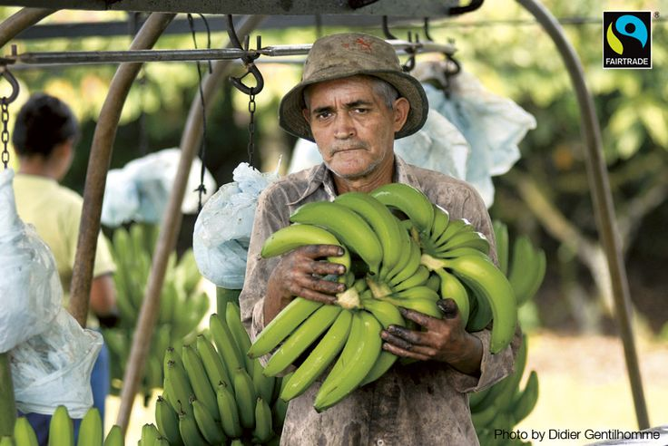 Fairtrade bananer