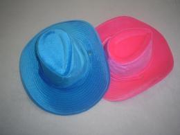 De cowboyhoeden zijn verkrijgbaar in 2 kleuren, roze en blauw. Erg leuk voor carnaval of andere feesten!    Feestelijke cowboyhoed huur je bij de #Partyspecialist