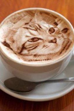 [Arte de gato en Latte] > [*- Latte: un tipo de Café con Leche hecho con café espresso y leche caliente al vapor, con más leche que un capuchino.] » Cat Latte Art