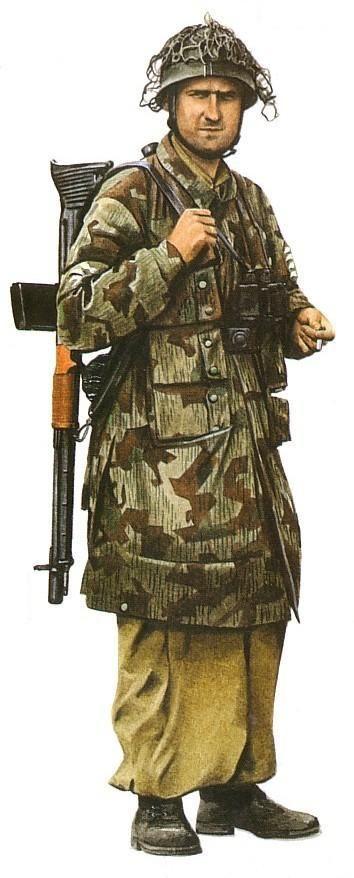 Sargento mayor. 1ª División Aerotransportada.jpg