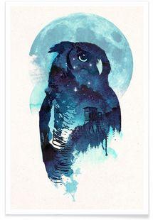 Midnight owl - Róbert Farkas - Affiche premium