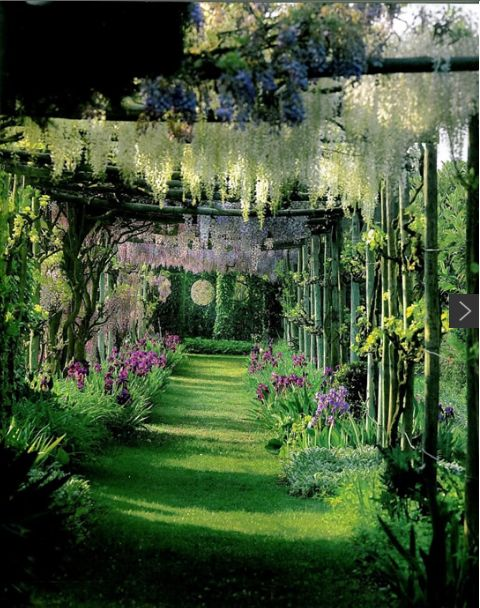 jardim vertical absolut:1000+ images about Vertical Gardens on Pinterest