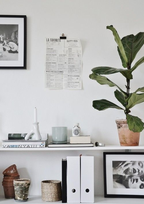 shelf styling. from hannasinspo
