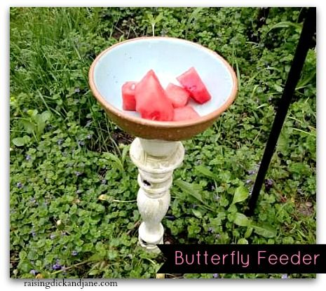 How to Welcome Butterflies to Your Garden {DIY Butterfly Feeder}