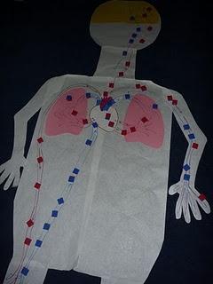 372 besten Health science ed Bilder auf Pinterest | Wissenschaft ...
