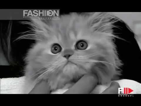 awesome PIRELLI CALENDAR 2006 Backstage 2 of 3 by Fashion Channel