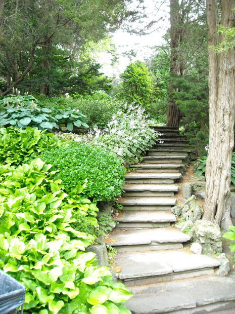 Steep sloped back yard landscaping ideas ideas for for Landscape ideas for hilly backyards