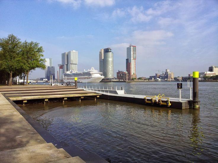Crown Princess at the Port of Rotterdam - Photo by Petka.