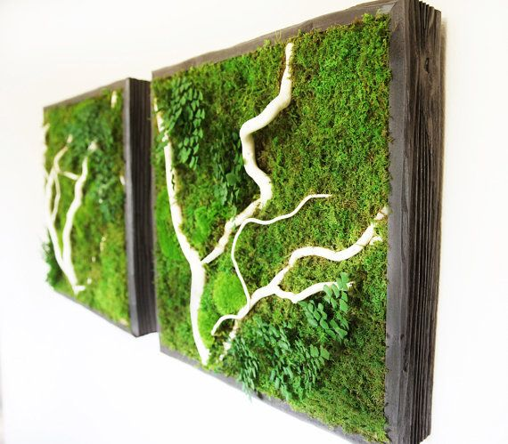 """€262.72 plus shipping 18""""x18"""" Plant Painting- No Care Green Wall Art. Real Preserved Plants. Moss and Fern Art with branches."""