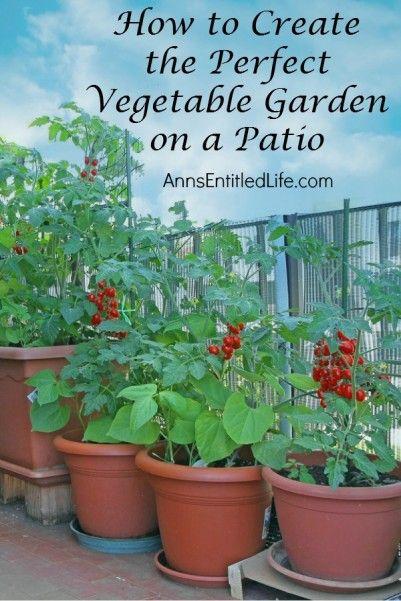 how to create the perfect vegetable garden on a patio dan330 - Patio Container Garden Ideas