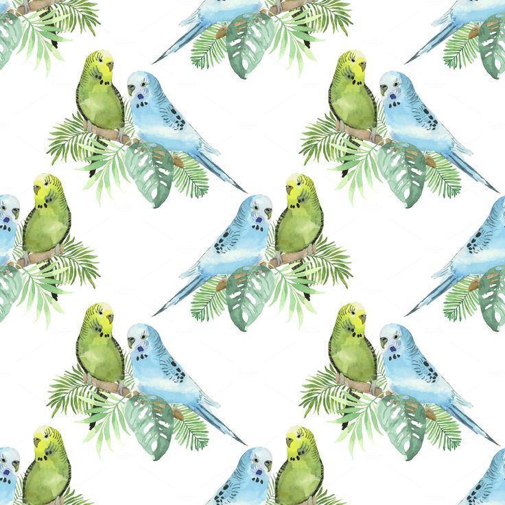 Tropical watercolor set by Natali_art on @creativemarket