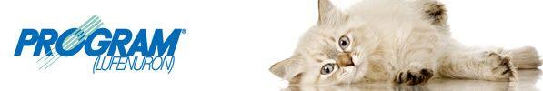 Traiter son chat une fois par mois contre les puces est parfois difficile. Une alternative aux traitements classiques existe: l'injection de Program tous les 6 mois. 1-Qu'est ce que Program Program est une injection de Lufénuron d'action prolongée. Ce...