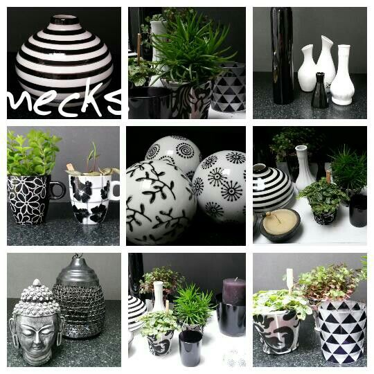 Zwart ,wit, en alles wat ertussen zit!