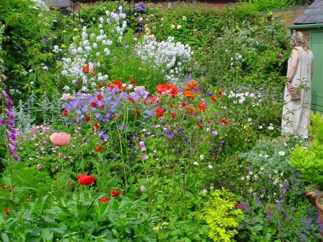 Design An English Country Garden