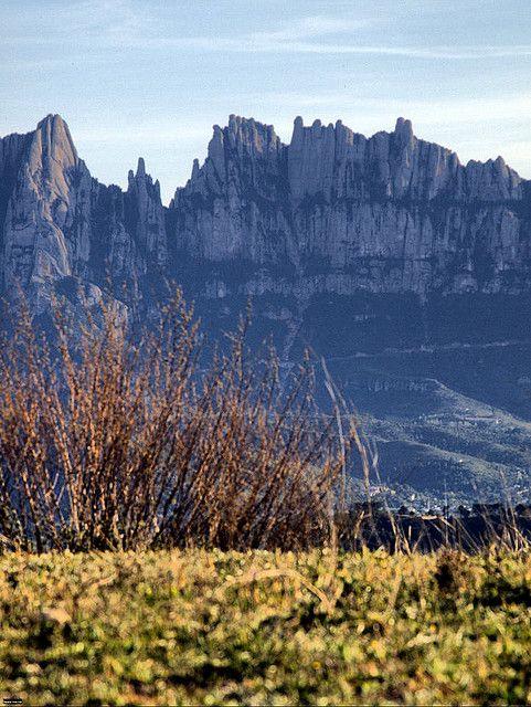 Montserrat des del Pla de Bufalvent, Manresa (Bages)  Catalonia