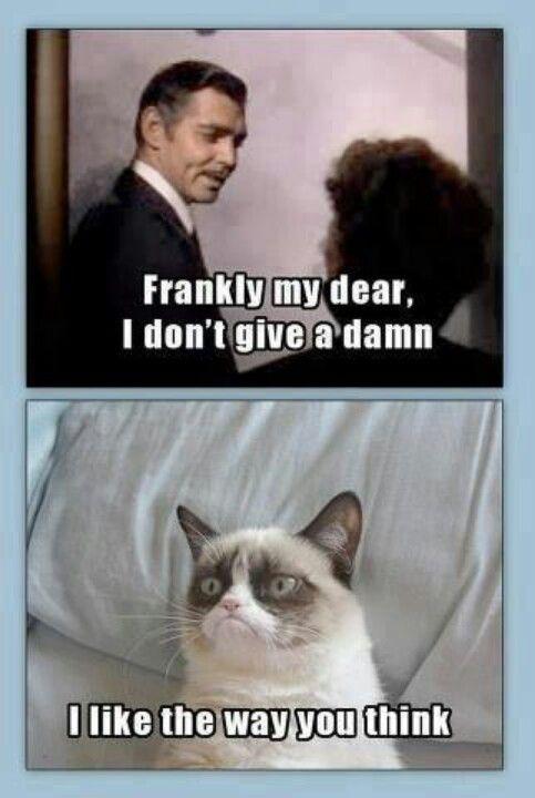 Grumpy Cat. Frankly my dear... Rhett Butler. Gone with the Wind.
