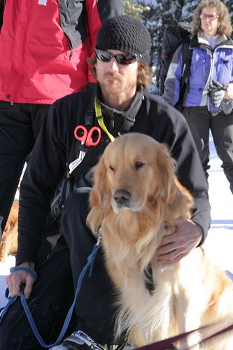 Sean McAllister and Sherman. On Tuesday February 5th Alpine Meadows hosted a full day of search and rescue dog training in conjunction with the Placer County Sherriff Search and Rescue, and the Placer County Sheriff's Search and Rescue Tahoe Dog Team. It was a real carnival for the dogs with helicopter rides, treasure hunts in the snow and non-stop games all designed to train them to sniff out and save buried avalanche victims. See the video @ our Youtube Channel.