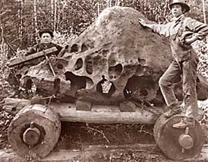Biggest meteorite in U.S. found in West Linn, Oregon.  Massive 16-ton chunk of iron was found in 1902 by a neighboring property owner, who dragged it half a mile in an attempt to steal it; today it's in the American Museum of Natural History in New York.