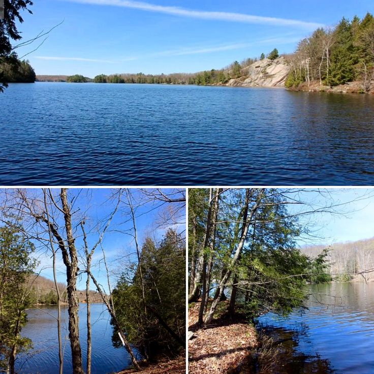 If vacant land is what you're looking for we have listings available.  Just look at this beauty on Blackstone Lake! Looking to build that dream cottage? This may be the one!