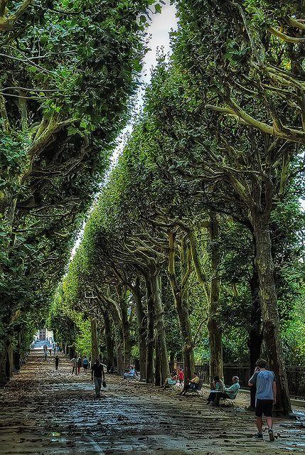 Jardin des Plantes, Paris, France.