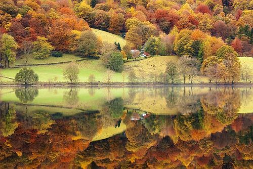 Reflections, Grasmere, England  photo via cageof