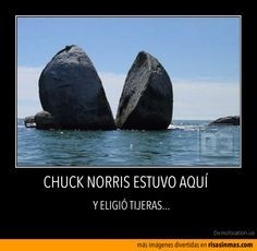 1000 ideas about search chuck norris on pinterest chuck norris funny funny chuck norris. Black Bedroom Furniture Sets. Home Design Ideas