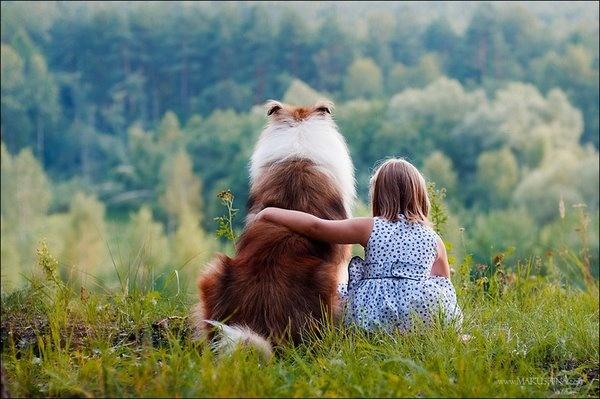 Puppy love.Collie, Little Girls, Steel Magnolias, Dogs, Best Friends, Wedding Gift, Gift Ideas, Sweets Teas, Animal
