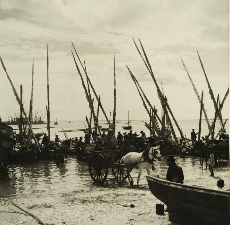 """Série exposição """"Motivos do Sul"""". Olhão, 1943/45."""