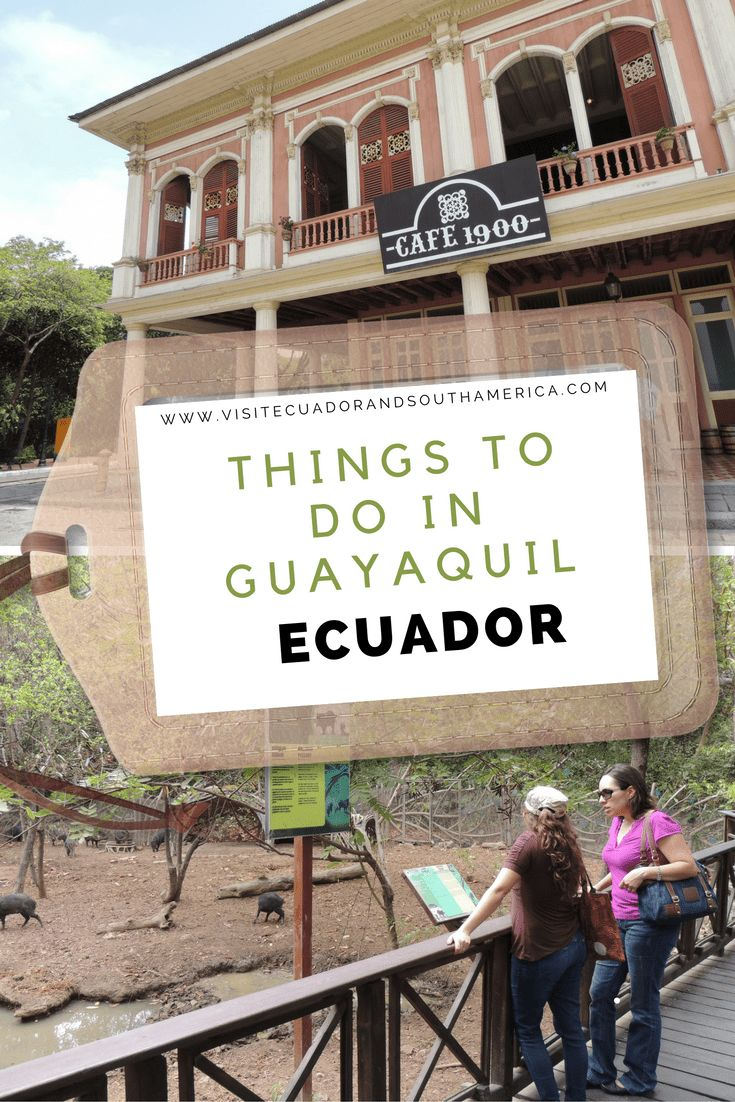 Find some top reasons to visit this vibrant port in the Coastal region of Ecuador