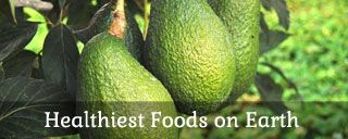 25 Diabetic Foods for Stable Blood Glucose and Overall Health   Bembu