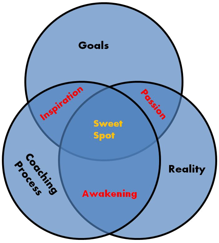 A Coaching Model Created by Shelina Wadiwala (Transformational & Life Transition Coaching, UNITED KINGDOM)  The Sweet Spot coaching model offers a holistic approach to living a life in the state of 'flow'. It is based on the idea that for anyone to feel deeply satisfied with their lives, their reality and the goals they set need to be congruent with what their inner selves desire. Continue...