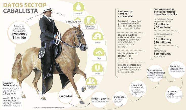 Mantener a un caballo le puede costar mensualmente entre $700.000 y $1 millón