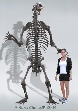 7 (Thankfully) Extinct Giant Versions of Modern Animals