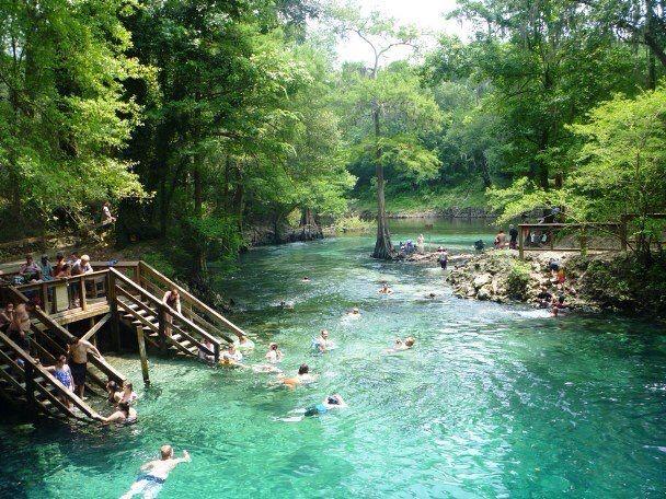 41 Best Madison Blue Springs Images On Pinterest Blue