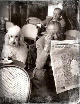 Café de Flore, Saint Germain des Prés - Paris, 1957 - Edouard Boubat #dog #poodle #vintage