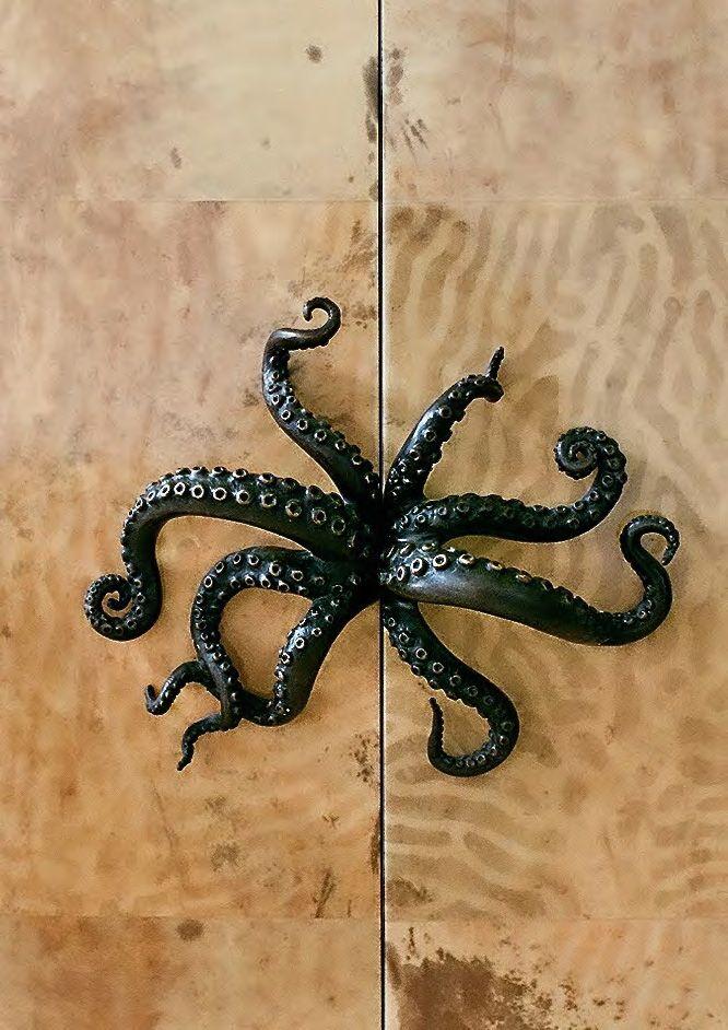 Octopus door pull