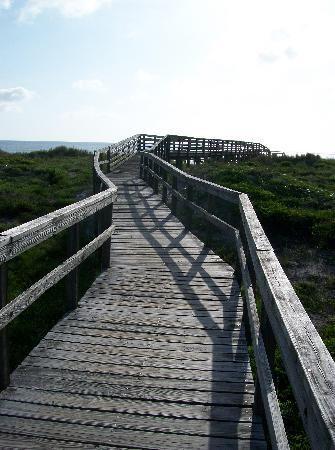 Little Talbot Island State Park - jacksonville fl