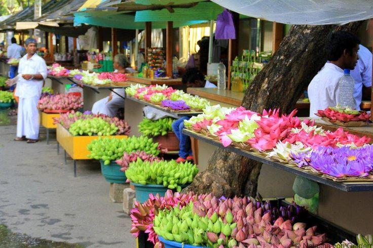Temple of the Tooth flower sellers Sri Lanka