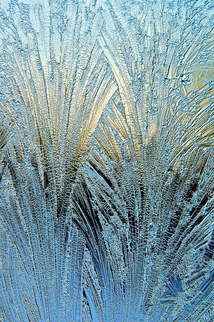Snowflakes look so weird up close...it's fascinating...pic by Eisblumen