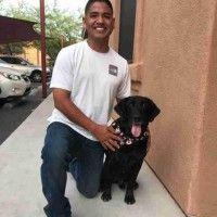 #dogalize David e Kash: soldato e cane si riuniscono dopo 6 anni #dogs #cats #pets