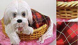 Puppy Dog Cake Tutorial from Yener's Way